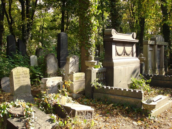 The old Jewish Cemetery in Wroclaw