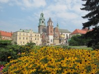 The Wawel Cathedral and the Wawel Castle in Krakow
