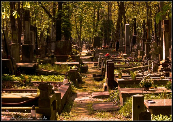 The beautiful Powazki cemetery